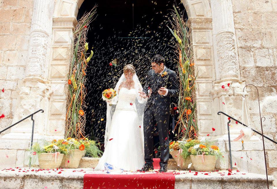 totnuvis Floristeria L'Arrel