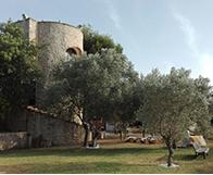 Finca Font Torreta