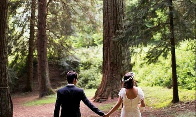 La màgia del teu casament al mig del bosc a l'Arborètum MasJoan