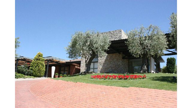 ses-oliveres-2