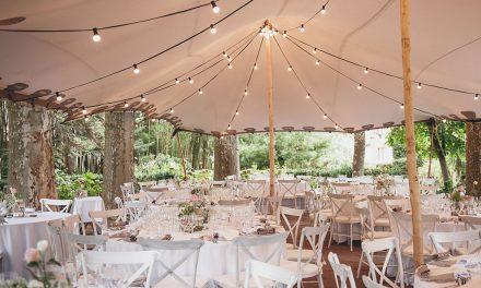 Carpes i decoració pel teu casament II
