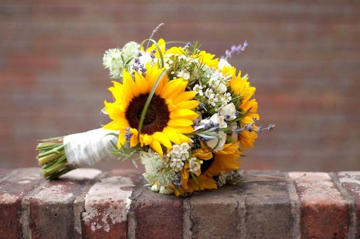 flors per a tu1