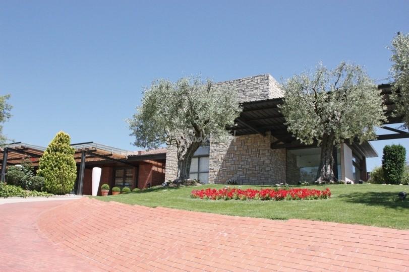 oliveres12